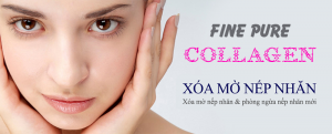 fine-pure-collagen