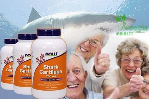 Viên uống sụn cá mập của Mỹ loại nào tốt